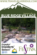 Modular Cabins: Blue Ridge Village